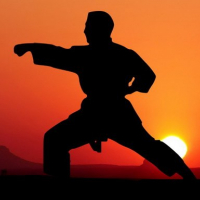Karate Sunset Warriors